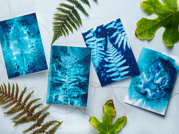 Pack of Blue Cyanotype Cards - Blank Greeting Cards / Notecards with Recycled Envelopes - Pack of 4 - Botanical Sun Prints - Ferns & Leaves