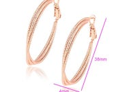 Fancy Rose Gold Hoops...