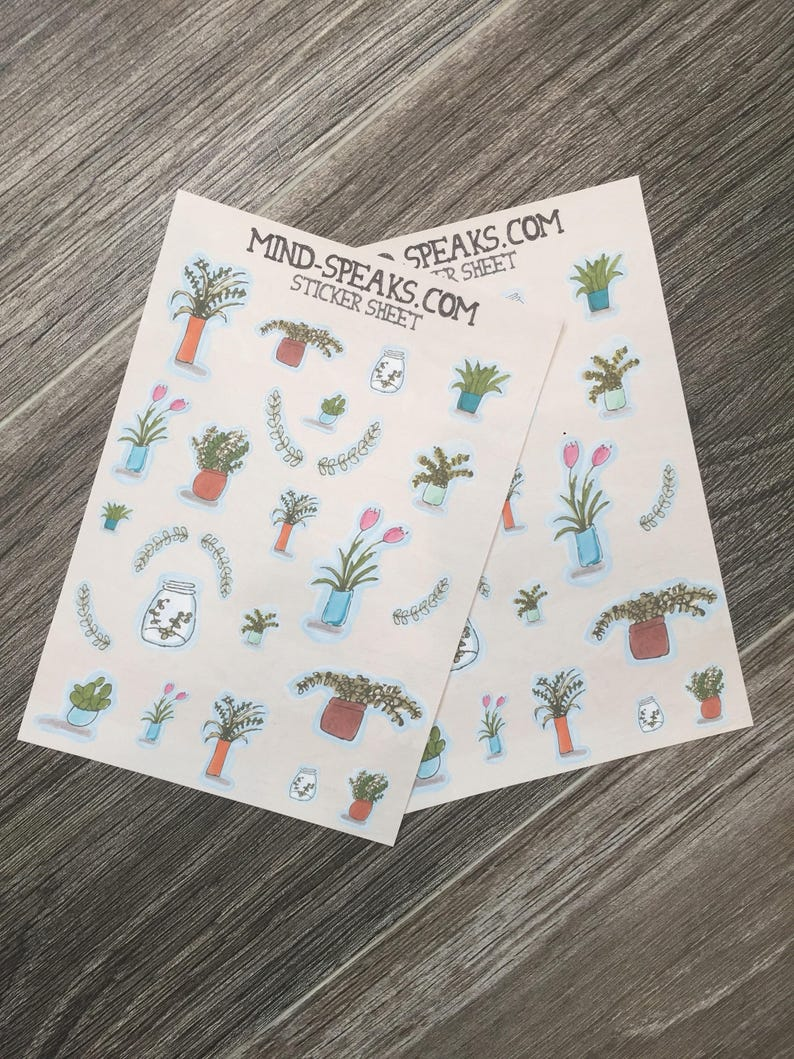 Water color succulent plant stickers image 0