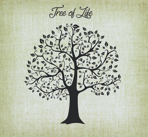 Tree Of Life Svg Tree Cutting File Vector Tree Of Life