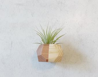 Mini Geo Magnet w/ Air Plant (Natural Wood)
