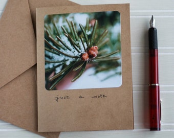 Just A Note handlettered evergreen photo notecards/pine needles with snow photograph any occasion greeting card/winter tree/nature photo