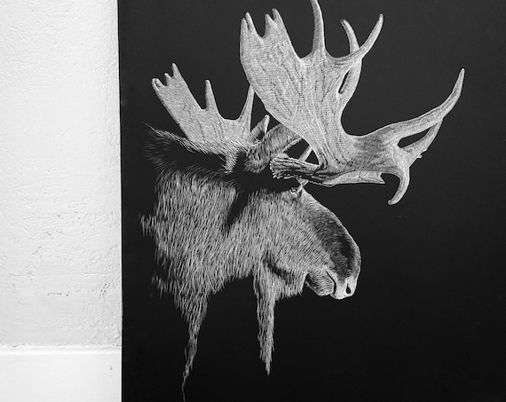 Etching of a Moose, 18x24 inch giclee print, Moose art, Moose print, Etching by Erik Linton