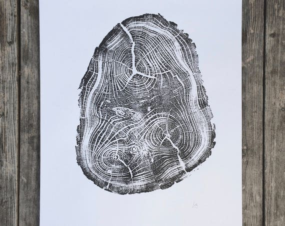 Locust Tree, Tree Anatomy, Botanical tree print, real tree stump art, Black Locust Tree, woodcut print, Tree stump print, Tree ring wall art