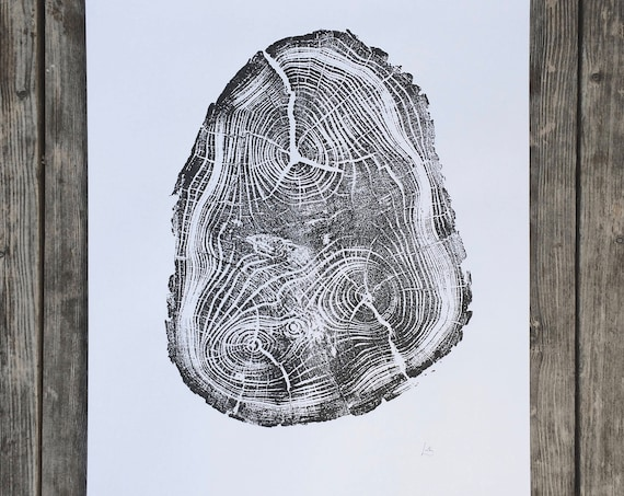 Tree Anatomy, Botanical tree print, real tree stump art, Black Locust Tree, woodcut print, Tree stump print, Tree ring wall art, Erik Linton