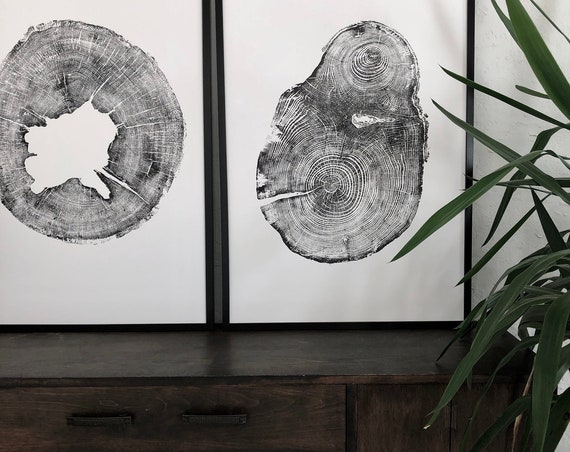 Diptych Tree ring prints, Tree ring art print, 24x36 inches, Tree stamp art, Oak wood, Hemlock tree, Puget Sound, Tree rings, Couples art