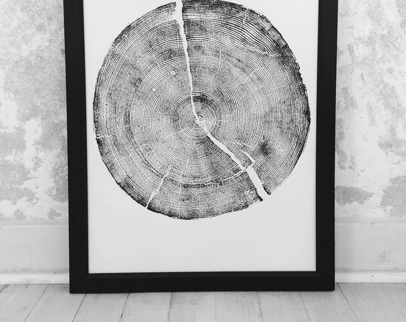 Rock Canyon Pine, Tree ring art print, Woodcut print, tree ring art print, Christmas prints, Christmas tree print, Holiday decor, print gift