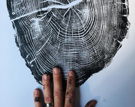 Osage Orange, Tree ring print, Nauvoo, Illinois art, 18x24 tree ring print, Original woodcut art, Handmade tree print by Erik Linton
