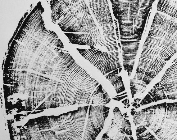 Glacier National Park, Split Log, National Park Art, Original Woodblock, Tree Ring Art Print, woodcut print, Sacred Geometry, Erik Linton