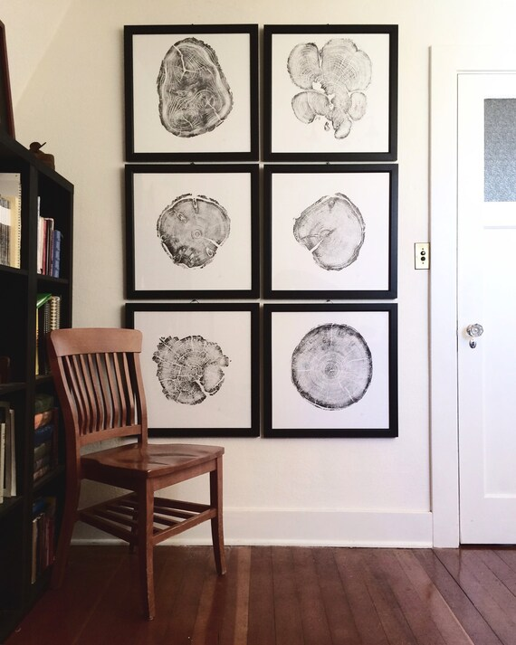 Large Wall Art Set framed, Set of 6 tree ring prints, Real Tree Ring Print, Gallery quality frames, Christmas art gifts, Large wall art set