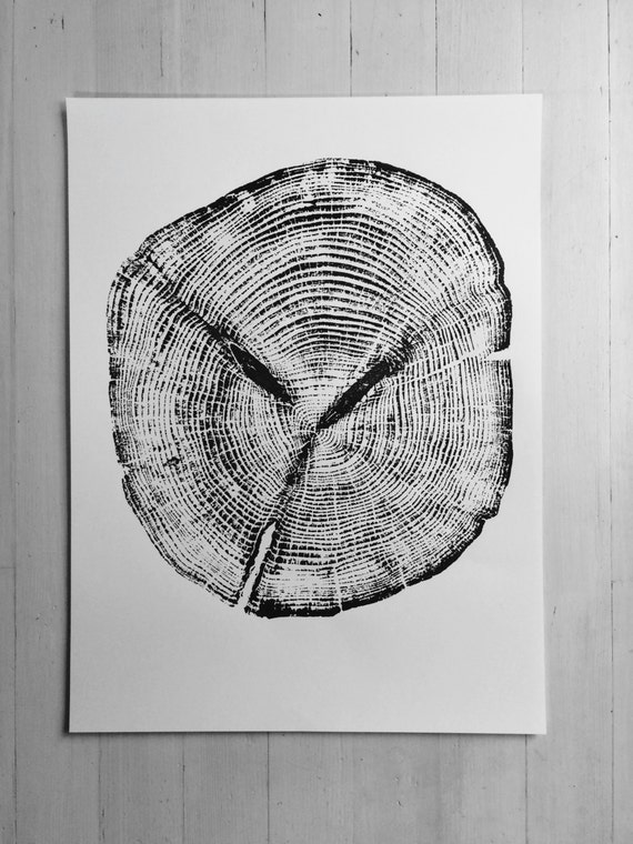 Alaskan Cedar, Ketchikan Alaska, Woodcut, Tree Ring Art Print, Tongass Forest, Real Tree Stump Art, Christmas art, Holiday prints, tree ring