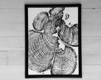 Tree Ring Art, Grand Canyon, Tree ring print, tree print, woodcut art, forest art, Father's Day Art, Art for Dads, art gift, tree stump