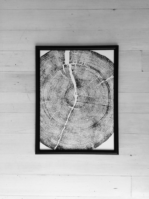 Tree ring art print, 12x16, woodcut print, tree slice art print, tree rings, Real tree art, woodcut art print, Rock Canyon, Utah