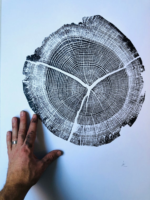 Walden Pond, Oak tree ring print, Thoreau art, Tree ring print from Walden Pond, Tree stump art, 18x24 inch woodcut, handmade by Erik Linton
