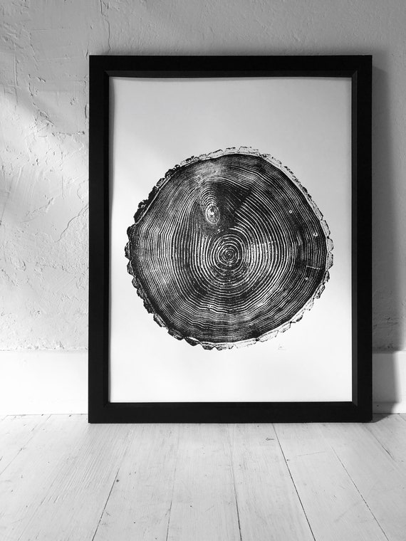Maine, Balm of Gilead, Poplar Tree, Tree ring print, Tree print, Tree slice, Tree stump, Maine art gift, Linton Art, Hand Printed art