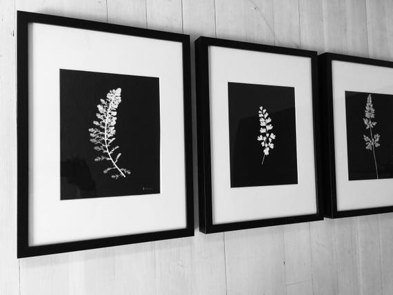 Botanical Print Set, Botanical Set of 3, set of 3 prints, American Botanical, Black Botanicals, Modern Botanicals, Christmas art gift, gifts
