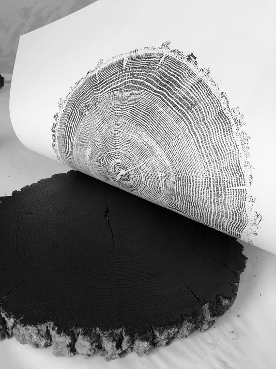 Ozark Mountains Oak, Tree ring Art Print, 18x24 inches, Woodcut art print, Tree ring art by Erik Linton
