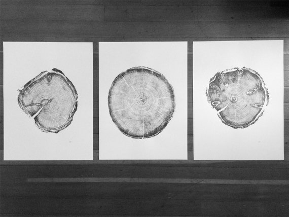 Utah Tree ring prints, Triptych art set, Best Father's Day Gifts, Father's Day art,  Real tree ring art, set of 3 prints, cabin wall art