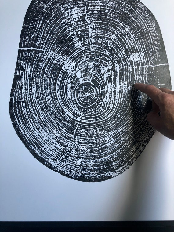Texas Pecan Tree, Tree stump art print, Waco Texas Art Print, 18x24 inches, Hand printed, signed by artist, Tree round art, Tree stamp art