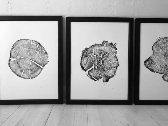 Triptych Tree Ring Art, Tree ring art prints from Alaska, Tetons, Yellowstone, Real Tree stump art, tree ring prints, 5th anniversary