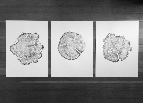 Triptych Tree Ring Art, Tree ring art prints from Alaska, Tetons, Yellowstone, Real Tree stump art, hand pressed tree ring prints, Dad Gifts