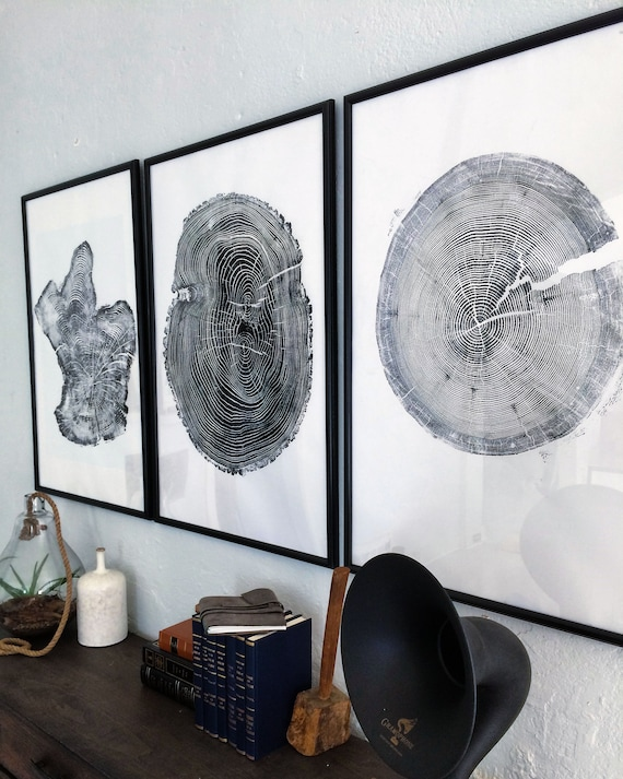 Set of 3 Large Tree Ring Prints, Tree stump prints, Tree ring print, tree ring art, triptych art set, large art prints, Three piece wall art