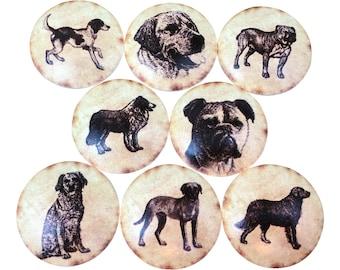 Superieur Set Of 8 Vintage Dogs Cabinet Knobs