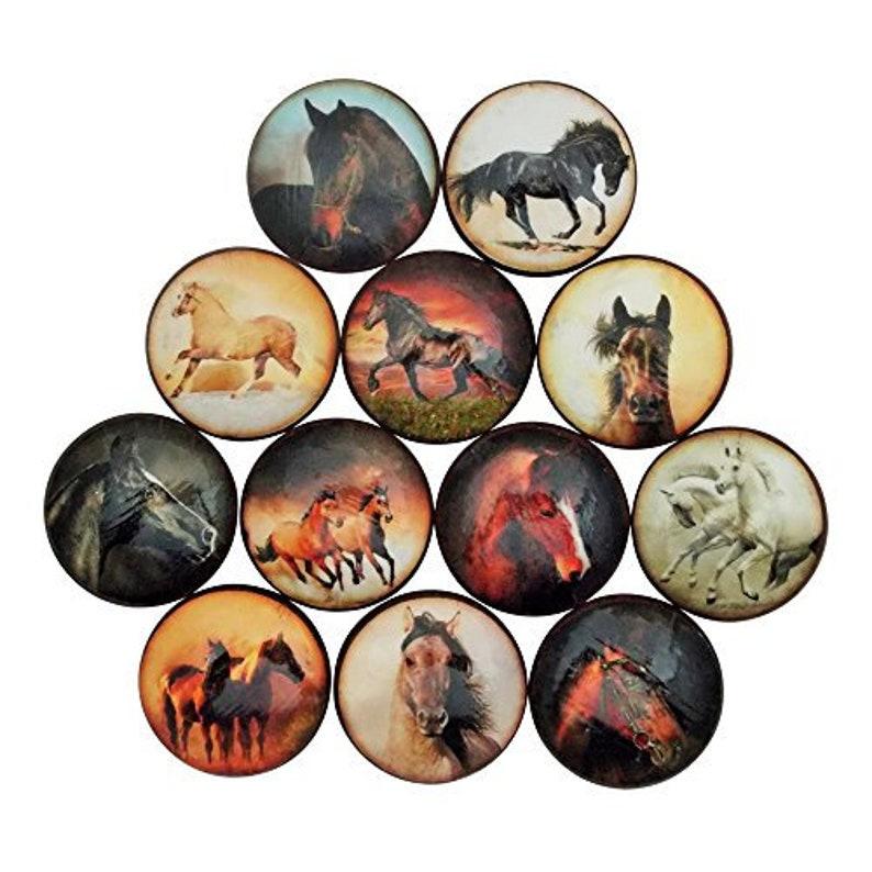 Set of 12 Wild Horses Cabinet Knobs