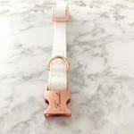 "Adjustable dog collar ""snow white"""