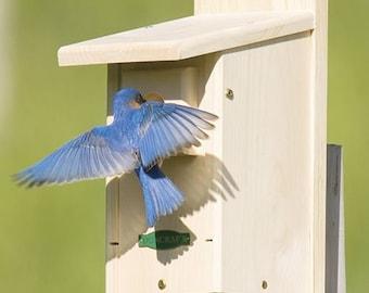 Duncraft Eastern Bluebird House