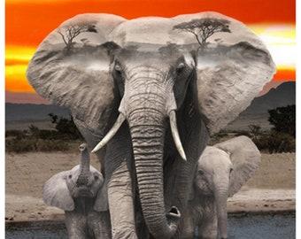 Elephant Fabric - African Savannah - Wild Kingdom -  Hoffman Fabrics - Q4495H-670 - Digital Print Fabric  - Priced by the 28-Inch Panel