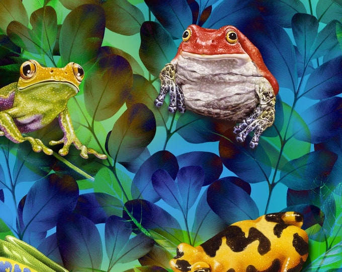 Featured listing image: Frogs - Jewels of the Jungle - Frogs & Leaves - Lori Anzalone for StudioE Fabrics 5563 17 Cerulean Blue -  Priced by the 1/2 yard