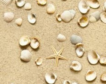 Seashell Fabric - Shells on the Beach - Sand Fabric - Paradise Found - Elizabeth Studios 555 Beige   - Priced by the 1/2 yard