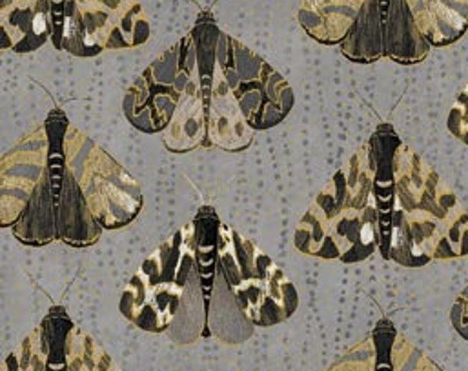 Featured listing image: Shimmer Fantasia Shadow - Moths -  Northcott Studio -  22958M 97 -  Priced by the Half Yard