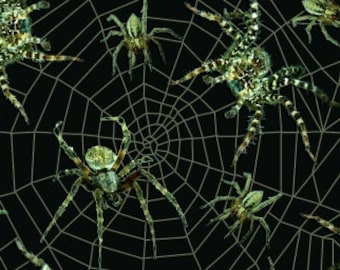 Fright Night fabric - Spider Fabric, Spider Web - Glow in the Dark - Blank Quilting 9714 G - Priced by the 1/2 yard