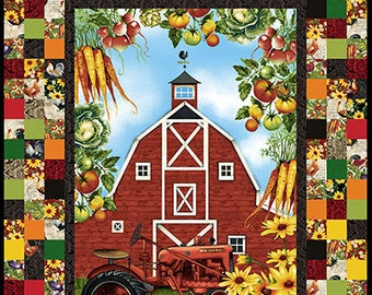 "Farmers Market - Barn Panel Checkerboard - Quilt Kit - Farmers Market by Geoff Allen - Studio e - 4450 Panel - DIY - Finishes 36""x56"""
