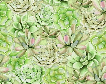 Cactus Fabric - Leaf Succulent - Humming Along by Nancy Mink - Wilmington Prints - 33832 773 Green - priced by the half yard