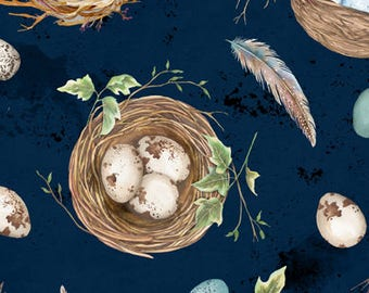 Bird Nest, Eggs, Bird walk - Nature Study by Nancy Mink for Wilmington Prints Fabric - 33823 424 Blue - Priced by the half yard