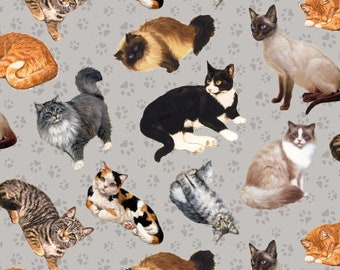 Cat Fabric, Kitty Fabric - Furr Ever Friends by Linda Picken  - Blank Quilting - 9077 90 Gray - Priced by the half yard