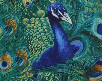 Peacock Fabric - Peacock feather - Timeless Treasures c5299 Teal - Priced by the half yard