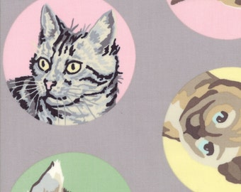 Cat Fabric, Tom Cat Meow or Never Fabric - Furball, Fur Ball Cats by Erin Michaels for Moda Fabrics 26110 16 - Gray Grey  - 1/2 yard