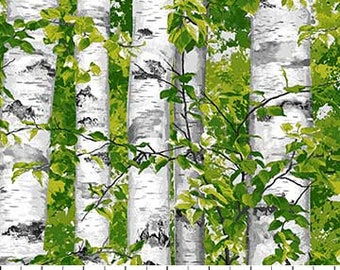 Trees - Birch Trees - Naturescape - Landscape  -  Northcott - 21844 74 - priced by the half yard