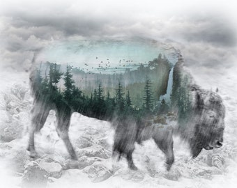 """Bison - Call of the Wild - Hoffman - Fog 4858 483 - Priced by the 31"""" x 44"""" Panel"""