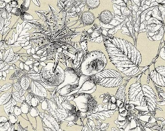 Encyclopedia Terrestria, Mushroom fabric, Toile Fabric - Digital print - Andover Fabric - 8520 Neutral (white/taupe) - Priced by the 1/2 yd