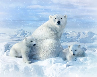 Polar Bear - Call of the Wild - Snow - Polar Bear Family - Hoffman - 4560-307 - Digital Print Fabric  - Priced by the 29-Inch Panel