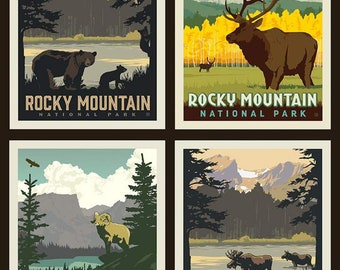 Rocky Mountain National Parks Fabric Poster - Anderson Design Group for Riley Blake PP 8935 - 4-Patch Block 36-Inch Panel