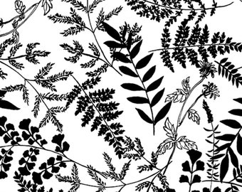 Fern Fabric - KANVAS by Benartex - Black and White Leaf Frond - Basic Black Collection 7796B 99 - Priced by the 1/2 yard