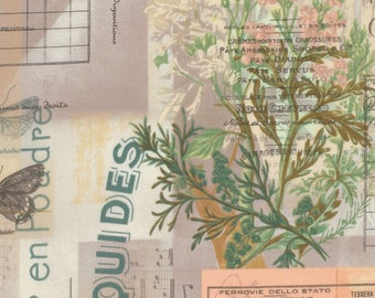 Botanical Eclectic Elements - Floral Ledger Fabric - Tim Holtz Free Spirit Fabrics PWTH02 - Priced by the Half yard