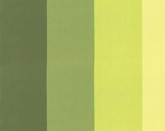 Color Me Happy - Color Block Fabric, Striped Fabric - by V & Co for Moda - 10829 15 Lime - Priced by the Half Yard