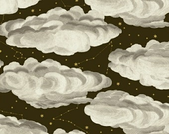 Cloud Zodiac Fabric - Stargazer by Whistler Studio for Windham  51758M 1 Charcoal Brown - Priced by the Half Yard